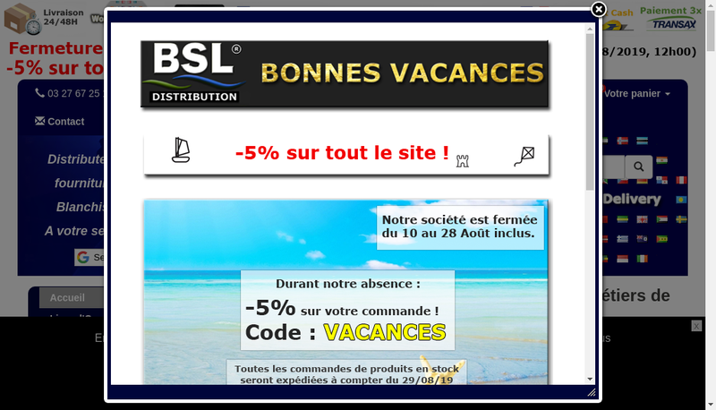 Capture d'écran du site de Bsl Distribution