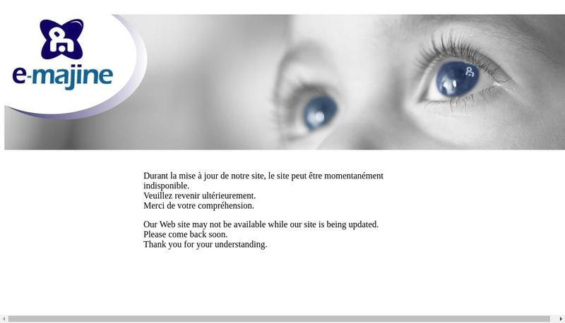 Capture d'écran du site de Daudet SARL