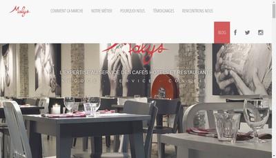 Site internet de Malys