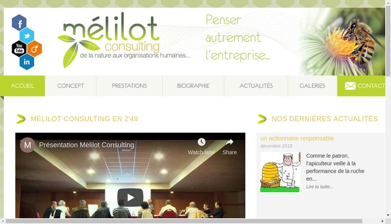 Capture d'écran du site de Melilot Consulting
