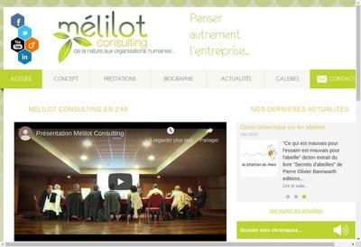 Site internet de Melilot Consulting
