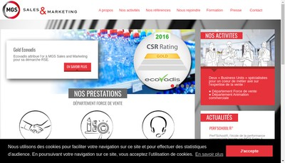 Site internet de Mgs Sales & Marketing