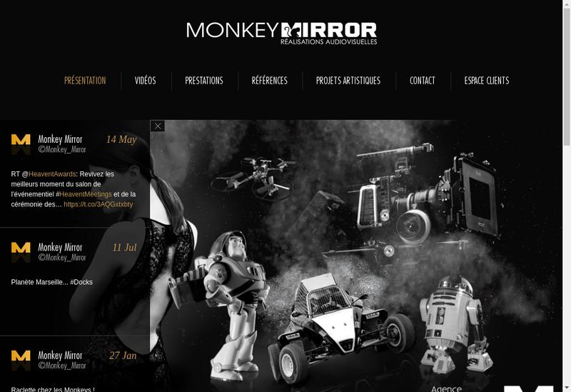 Capture d'écran du site de Monkey Mirror