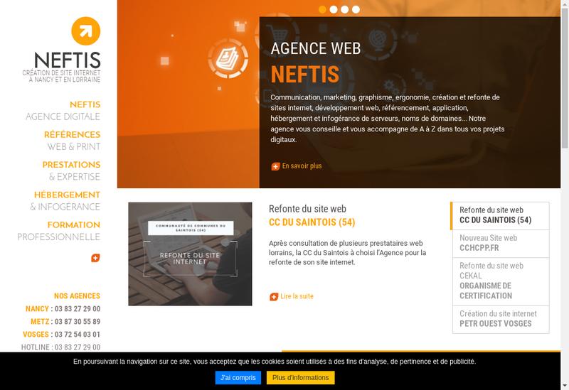 Capture d'écran du site de Neftis