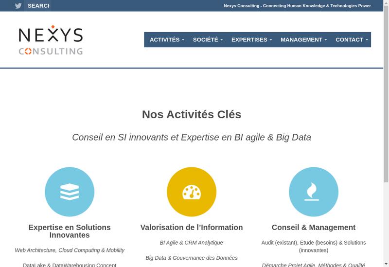 Capture d'écran du site de Nexys Consulting
