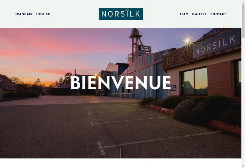Capture d'écran du site de Norsilk