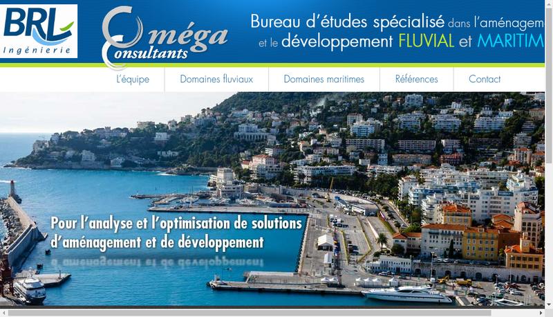 Capture d'écran du site de Omega Consultants