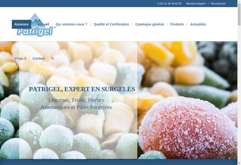 Capture d'écran du site de Patrigel