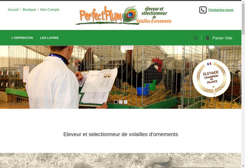 Capture d'écran du site de Perfect Plum