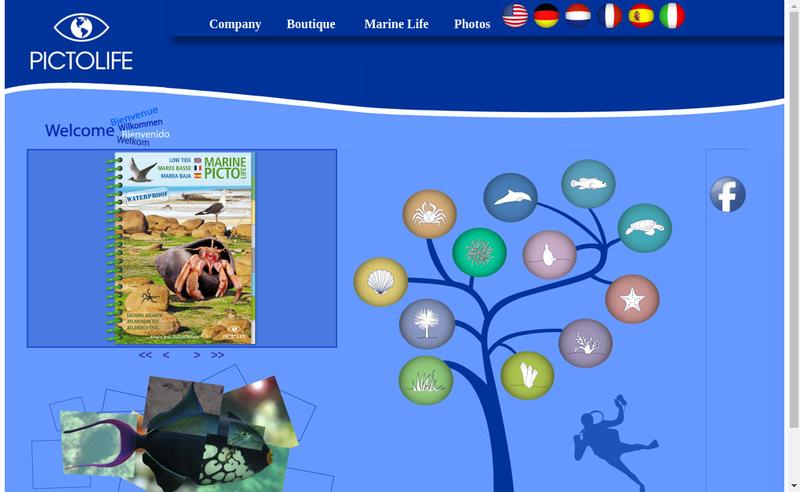 Capture d'écran du site de Pictolife