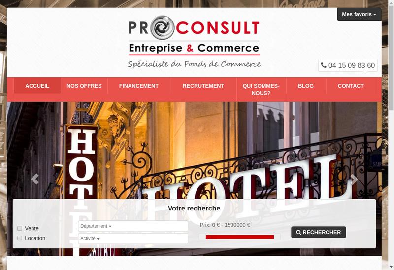 Capture d'écran du site de Pro Consult