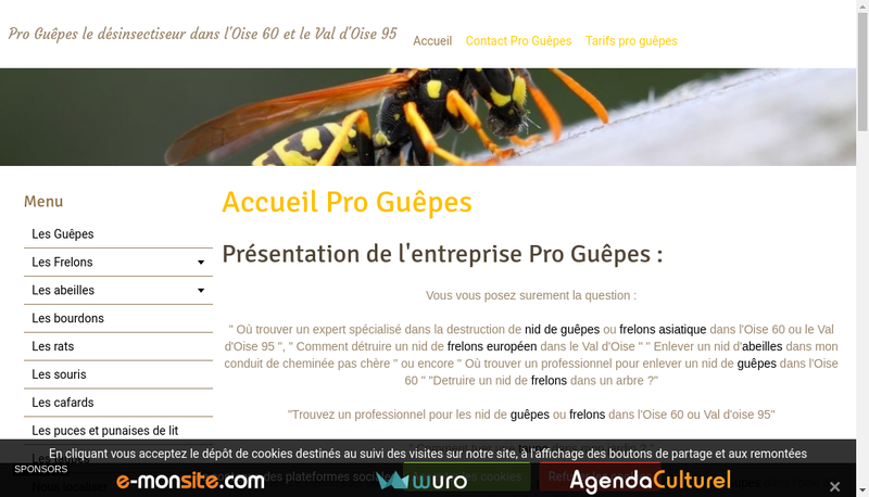 Capture d'écran du site de Pro Guêpes