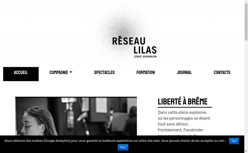 Capture d'écran du site de Reseau Lilas