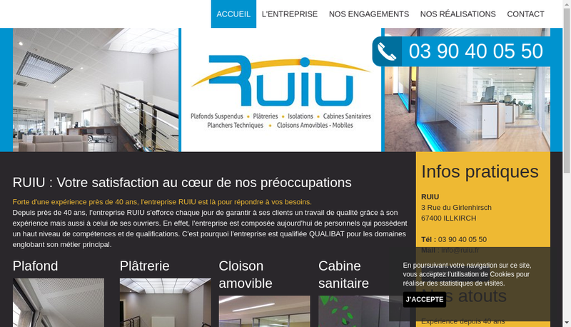 Capture d'écran du site de RUIU