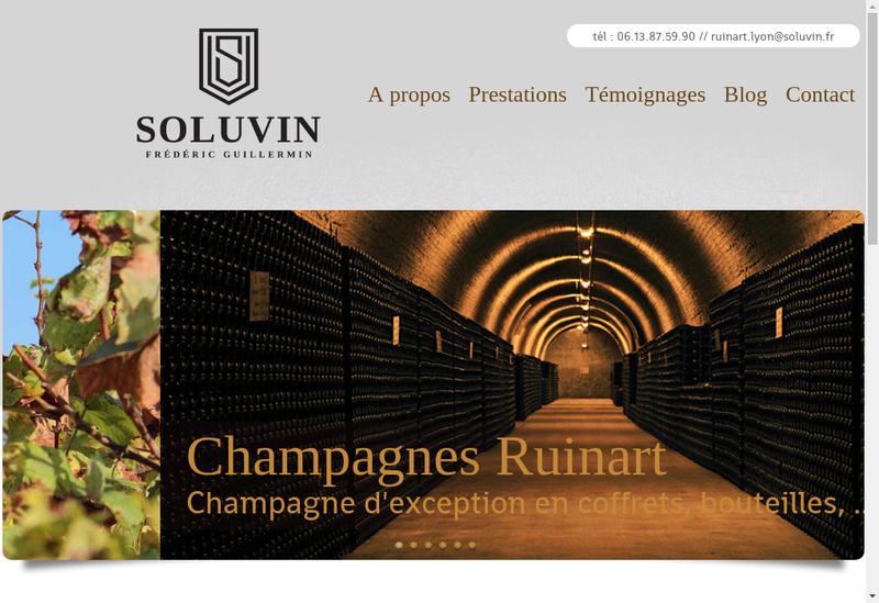 Capture d'écran du site de Soluvin