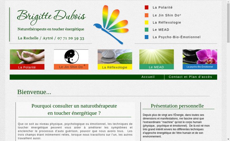 Capture d'écran du site de Brigitte Dubois