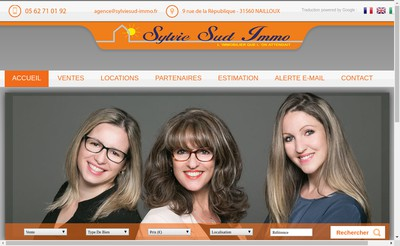 Site internet de Sylvie Sud Immo