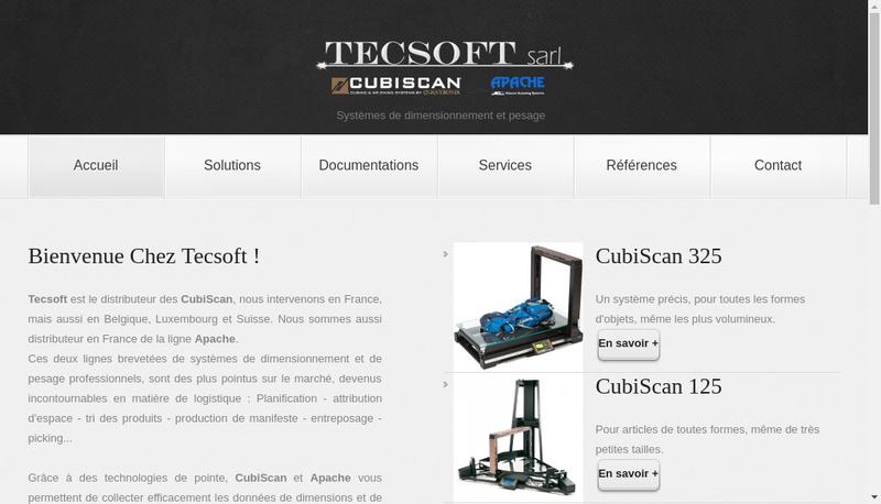Capture d'écran du site de Tecsoft