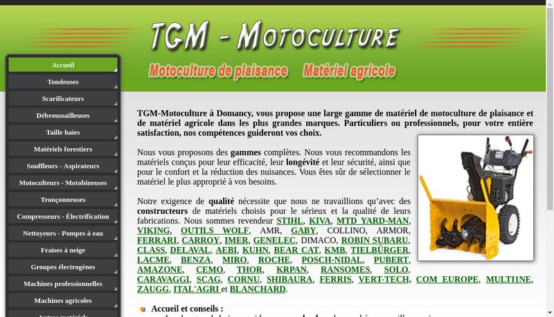 Capture d'écran du site de Ferstl Tgm