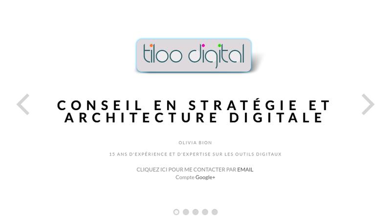 Capture d'écran du site de Tiloo Digital