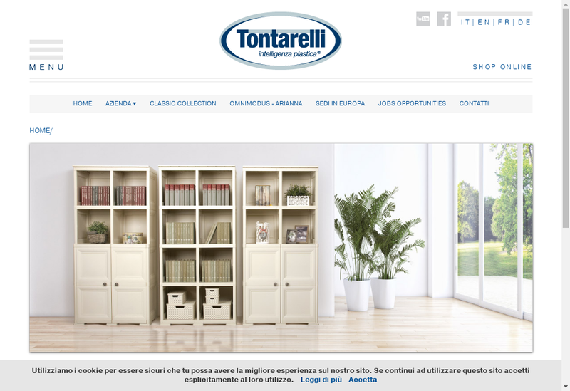 Capture d'écran du site de Tontarelli France