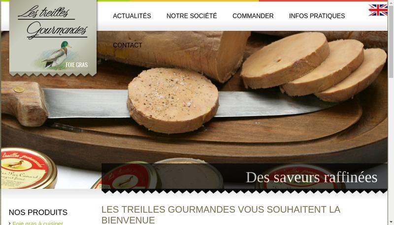 Capture d'écran du site de LTG