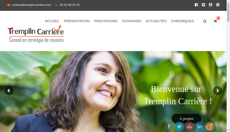 Capture d'écran du site de Tremplin Carriere