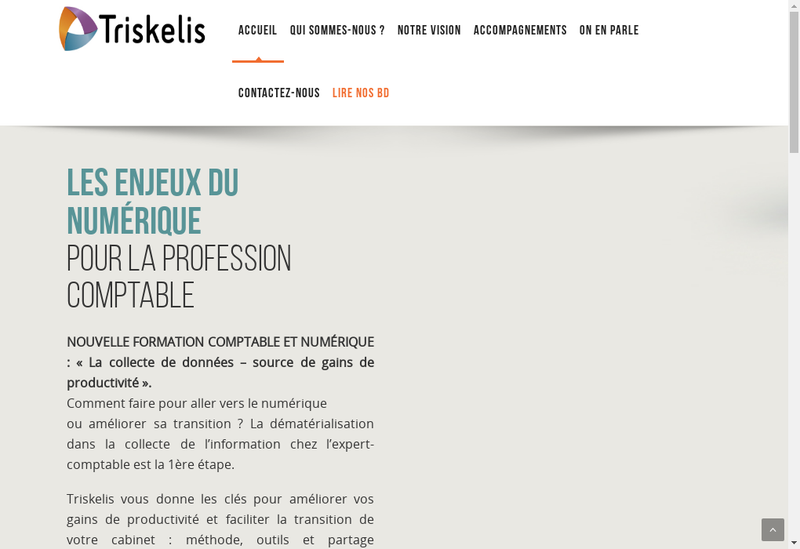 Capture d'écran du site de Triskelis
