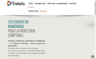 Site internet de Triskelis