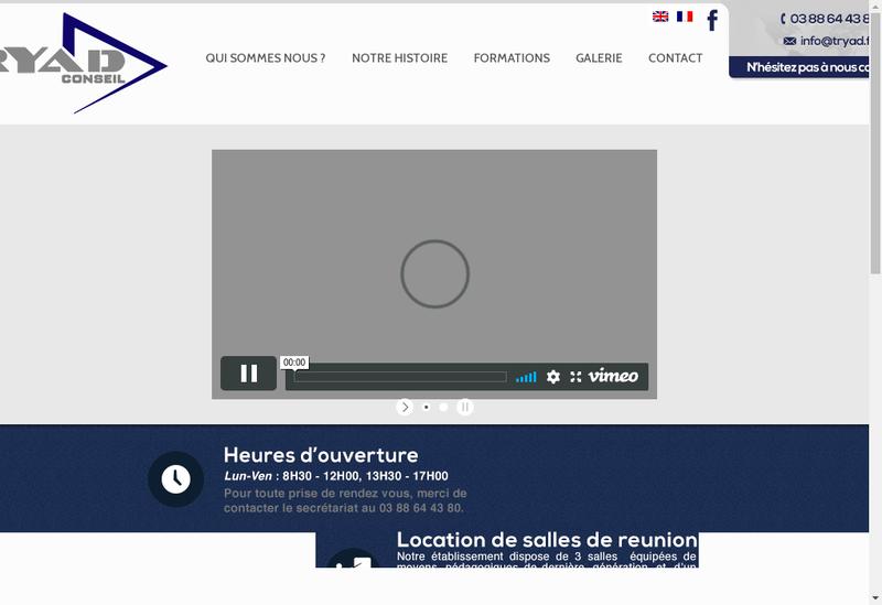 Capture d'écran du site de Tryad Conseil