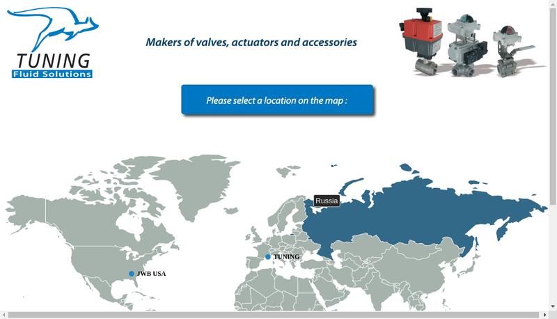 Capture d'écran du site de Tuning Fluid Solutions