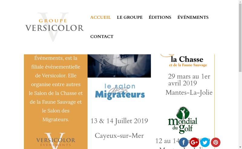 Capture d'écran du site de Versicolor Editions