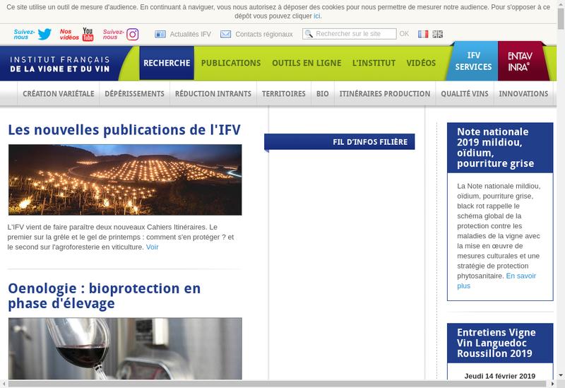 Capture d'écran du site de Ifv Services