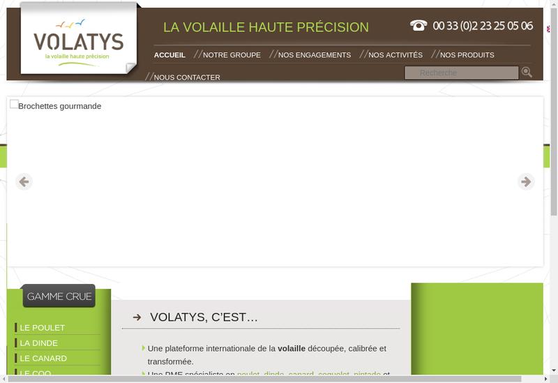 Capture d'écran du site de Volatys Industries