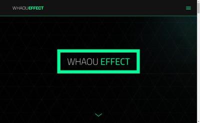 Site internet de Whaou Effect
