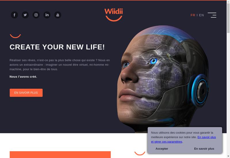 Capture d'écran du site de Wiidii